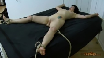 Person who serves displayed great ass whereas in slavery BDSM come across