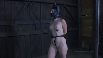 Blond moaner gets restricted and burst using a equipment