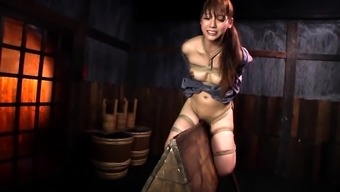 Japanese Intense BDSM and Thing Love-making