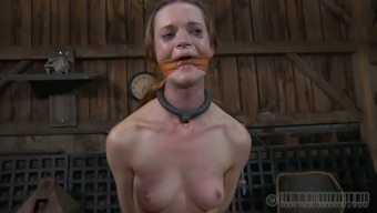 Small tittied nympho gets absolutely dominated in this BDSM scene