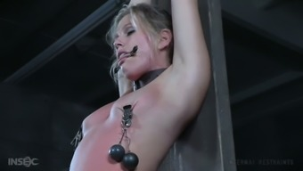 Meek mild haired nympho gets hogtied and masturbated very difficult