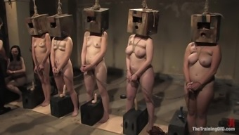 Submissve Girls Please Their Masters Within the Servitude Reduce